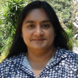 Profile picture for author, Padma Subramanian