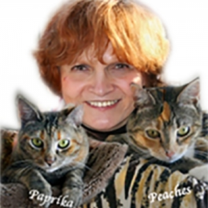 Profile picture for author, Carol Lowbeer